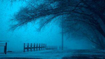 Фото бесплатно ART IRBIS PRODUCTION, Москва, туман, снег, Khusen Rustamov, Хусен Рустамов, xusenru, Природа, Россия, Город, мрак, дерево