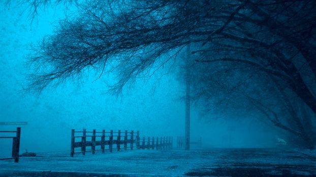 Фото бесплатно ART IRBIS PRODUCTION, Москва, туман