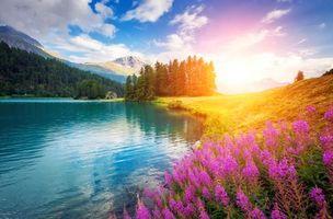 Фото бесплатно озеро, горы, холмы, берег, цветы, деревья, пейзаж