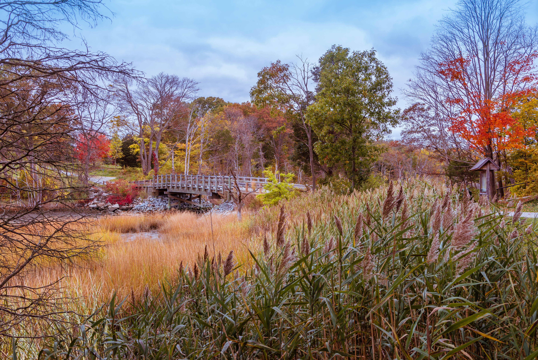 обои Англия, Hingham, Массачусетс, осень картинки фото