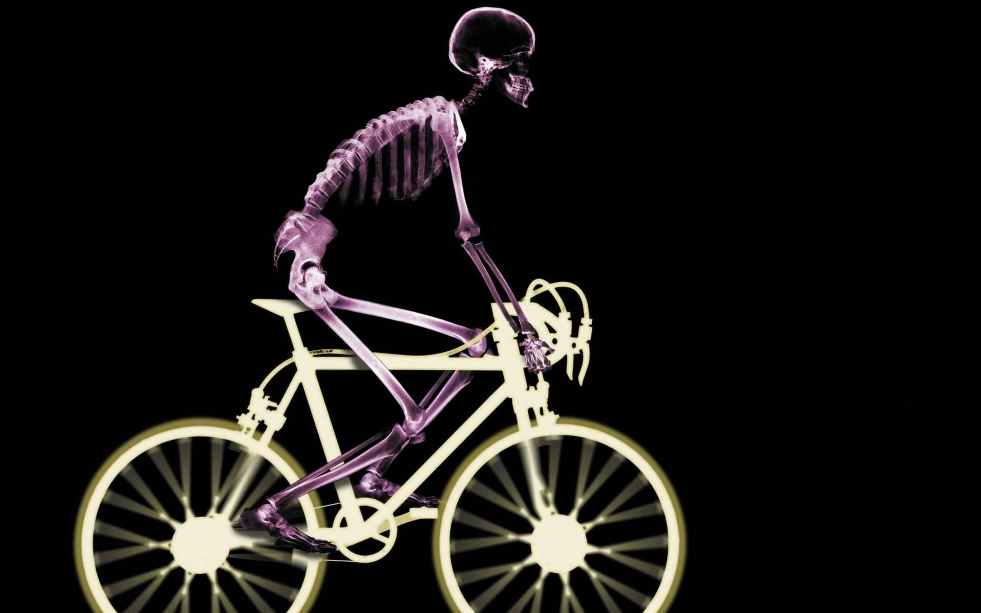 обои человек, скелет, велосипед, рентген картинки фото