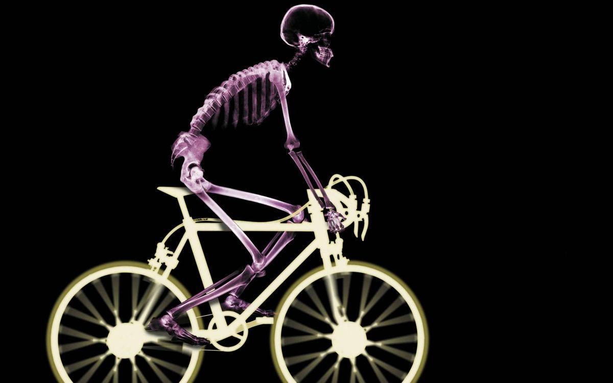 Фото бесплатно человек, скелет, велосипед - на рабочий стол