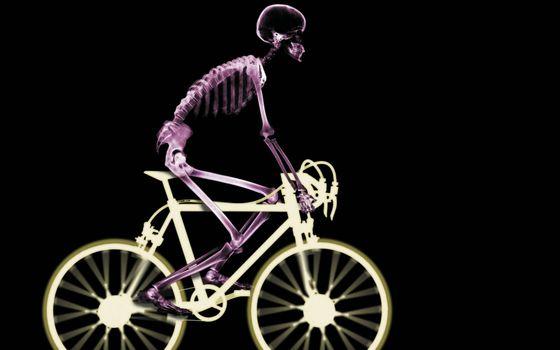 Фото бесплатно человек, скелет, велосипед