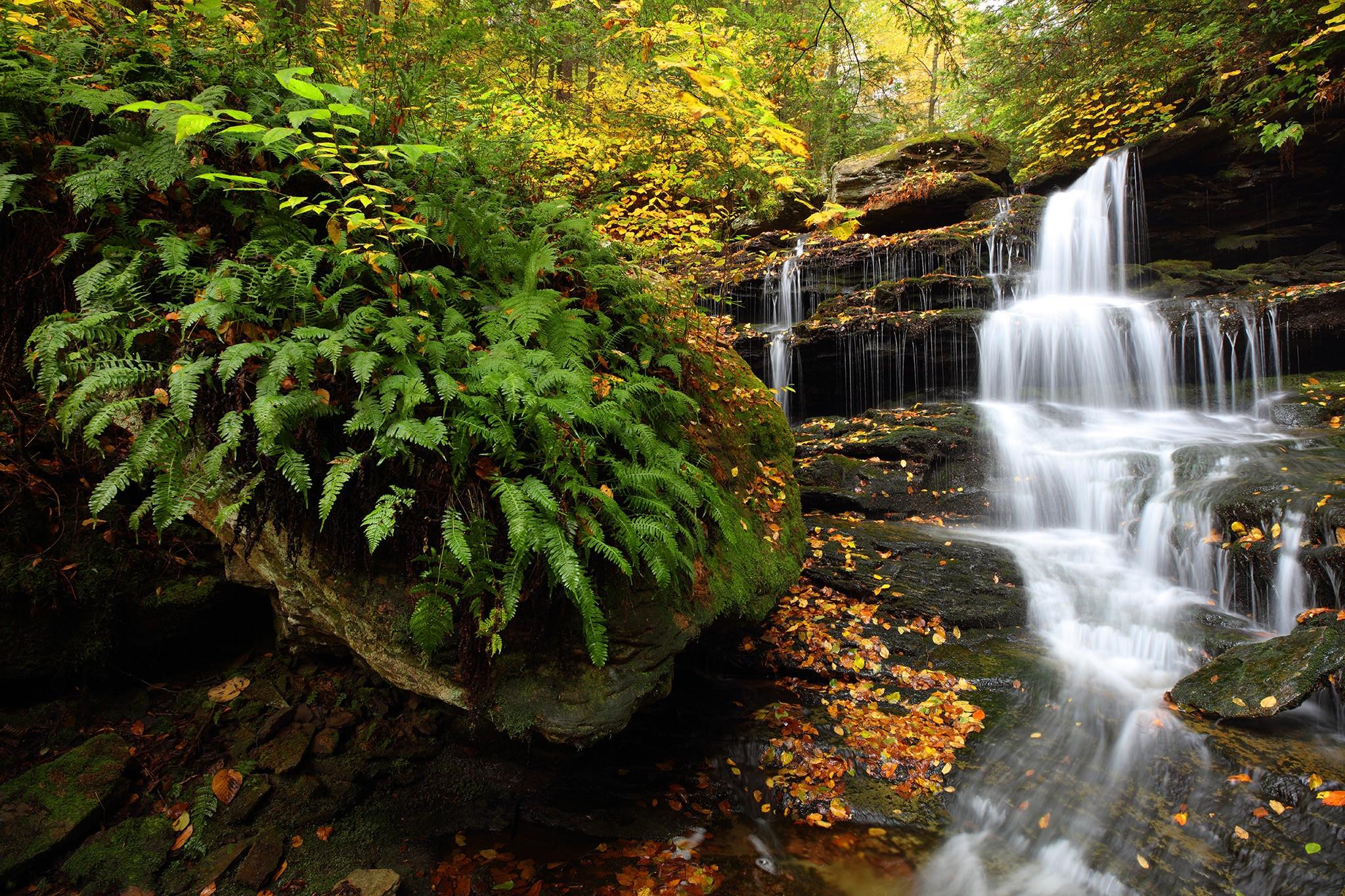 обои Hidden Falls, Rickets Glen State Park, осень, водопал картинки фото