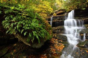 Фото бесплатно Hidden Falls, Rickets Glen State Park, осень