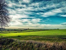 Фото бесплатно Лестершир, Великобритания, поле