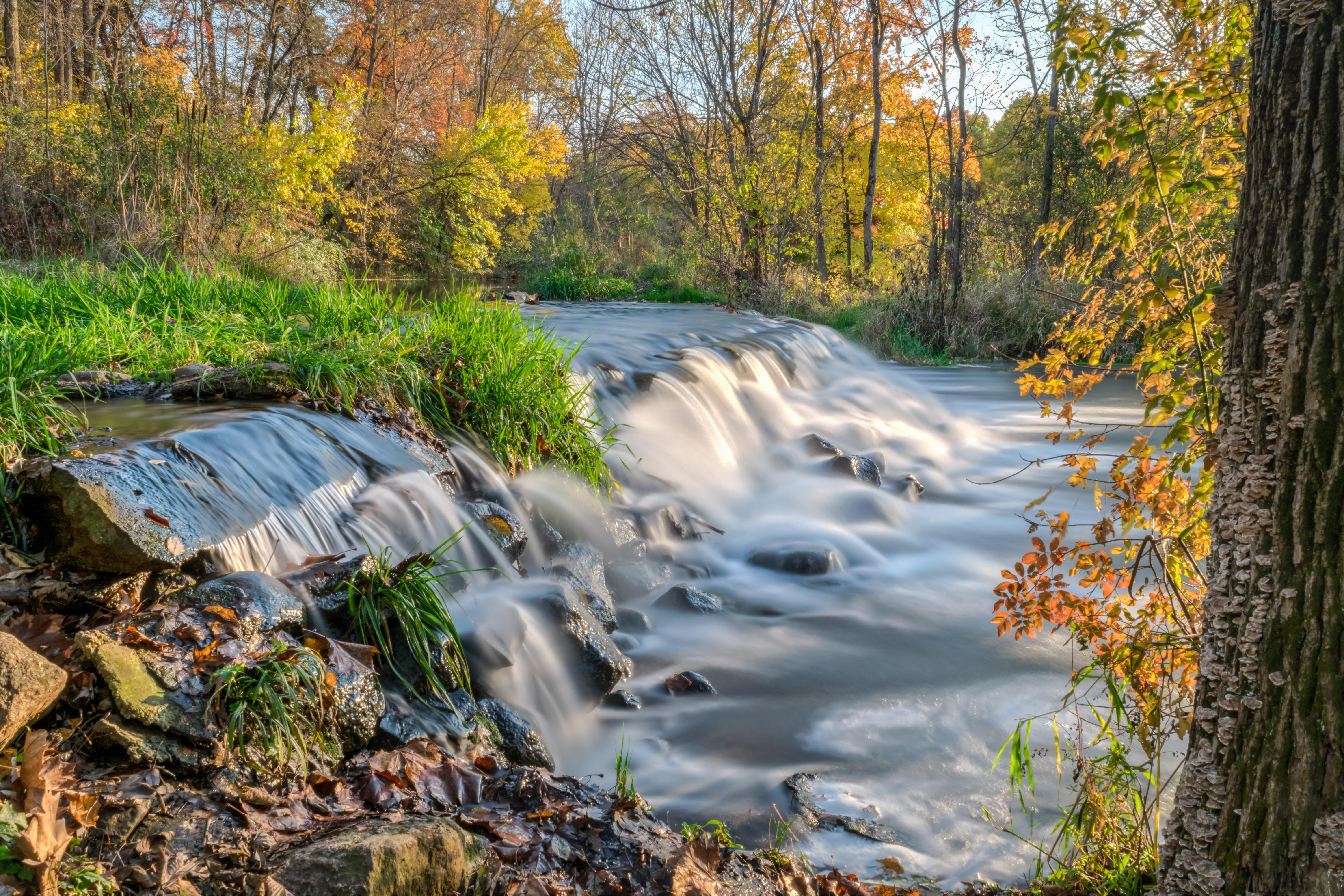 обои осень, река, лес, деревья картинки фото