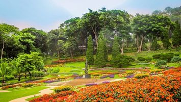 Photo free flowerbeds, Chiang Rai, Thailand