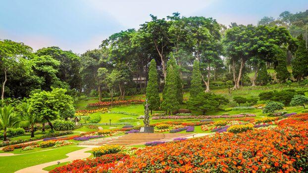 Photo free flowerbeds, Chiang Rai, Thailand