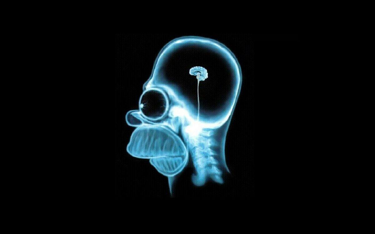 Обои Гомер, симпсон, рентген, мозг, маленький, юмор на телефон | картинки мультфильмы