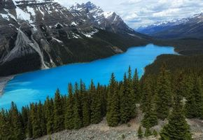 Бесплатные фото Peyto Lake, Banff National Park, Alberta, Canada