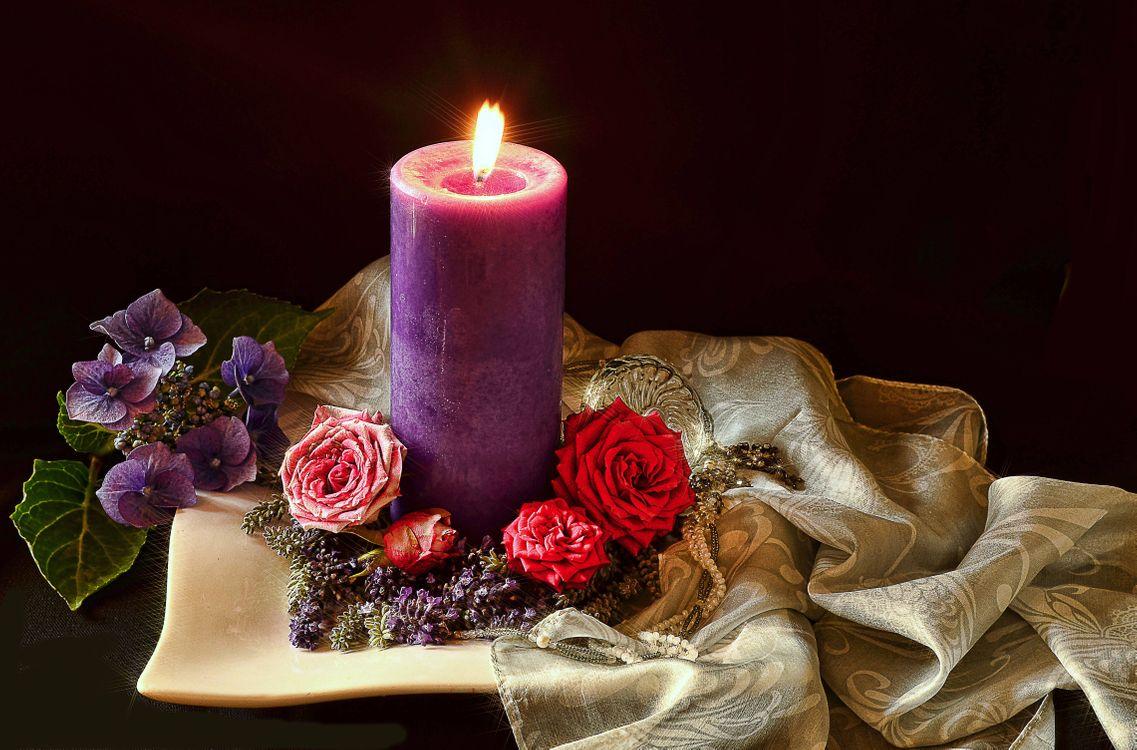 достоверных свечи фото красивые представители этой знатной