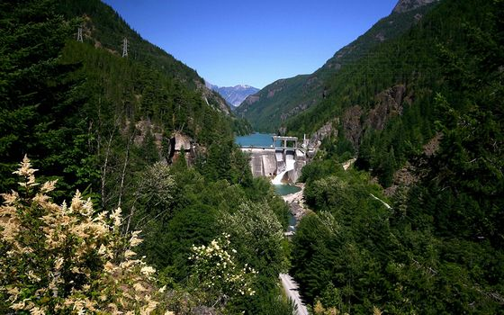Photo free trees, gorge, mountains