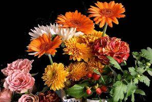 Фото бесплатно букет, цветы, герберы, хризантемы, розы, флора