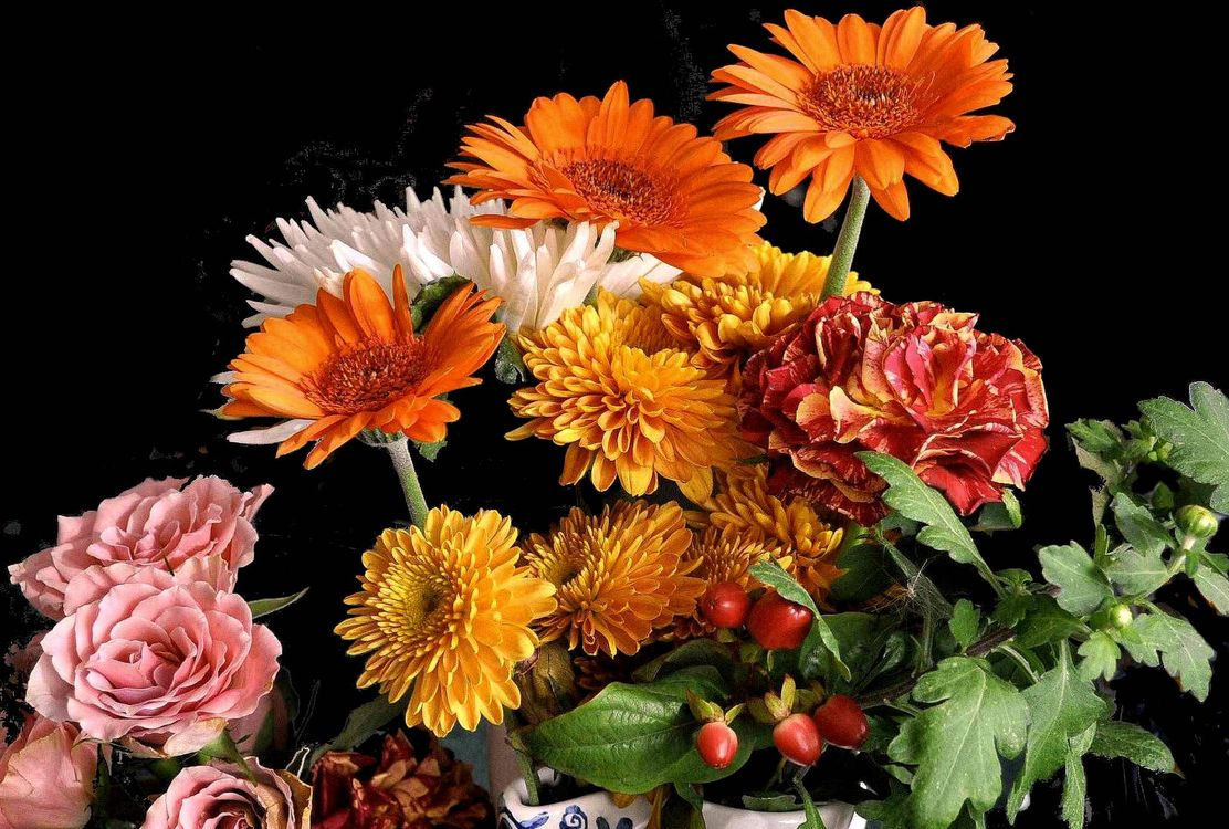Photos for free chrysanthemums, flora, bouquet - to the desktop