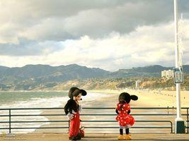 Бесплатные фото мики-маус,берег,море,песок,горы. холм,national geographic,столб