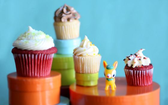 Бесплатные фото кексики,пирожные,крем,украшение,фон,голубой,коробки,ослик,десерт,вкусно,еда