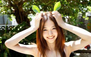 Фото бесплатно листья, зелень, солнце