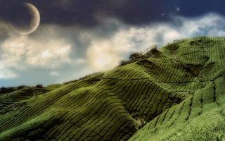Бесплатные фото небо,облака,луна,звезды,трава,поле,луга