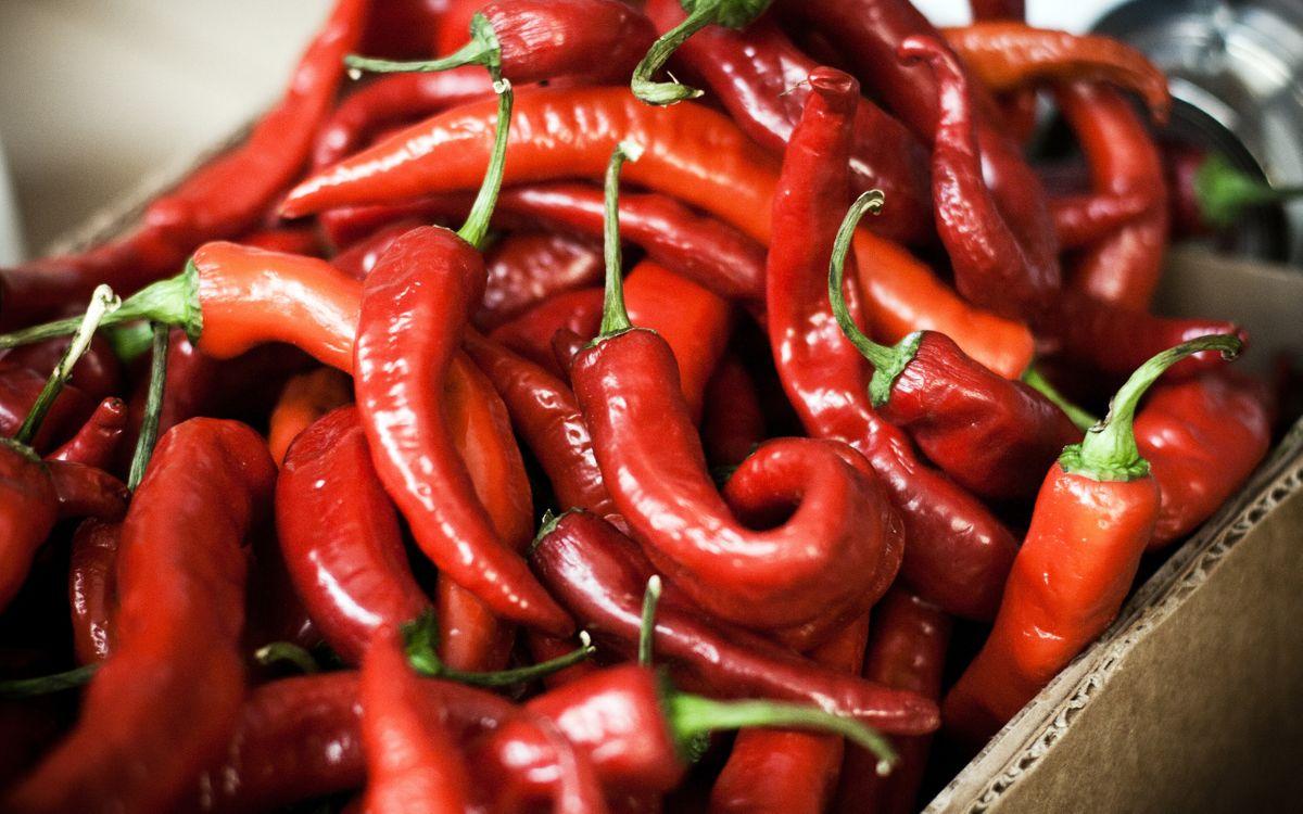 Фото бесплатно перец, чили, красный, маленький, жгучий, овощ, приправа, острый, коробка, еда, еда