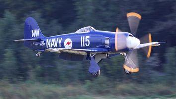 Бесплатные фото самолет, синий, крылья, винт, колеса, лес, авиация
