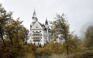 Фото бесплатно деревья, туман, замок