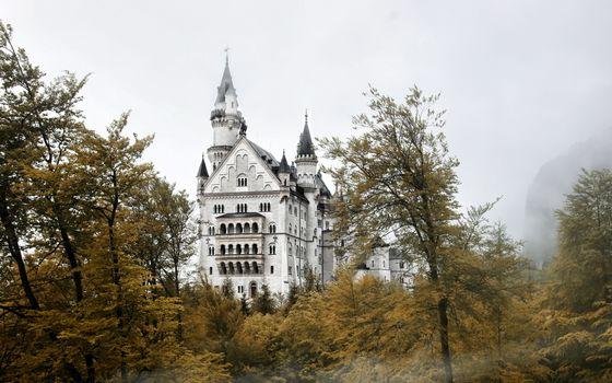 Бесплатные фото деревья,туман,замок