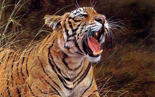 Фото бесплатно рендеринг, тигр, оскал