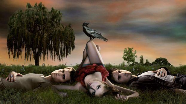 Заставки дерево, трава, птица