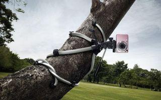 Фото бесплатно деревья, трава, фотоаппарат