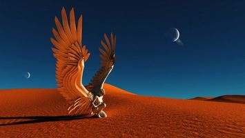 Фото бесплатно девушка, крылья, перья