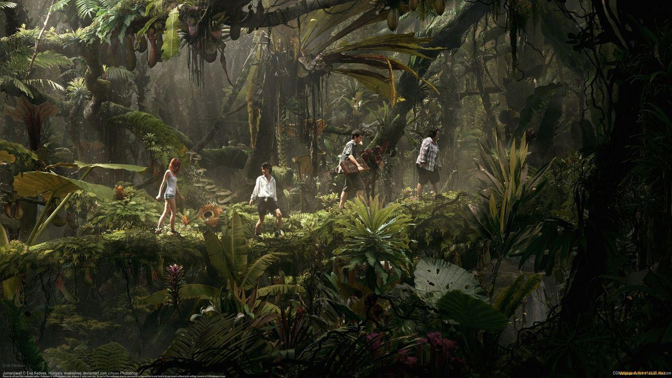 Фото бесплатно джунгли, деревья, листья, кусты, трава, люди, природа, природа