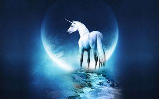 Обои единорог, белый, луна, ручей, камни, обои, фантастика