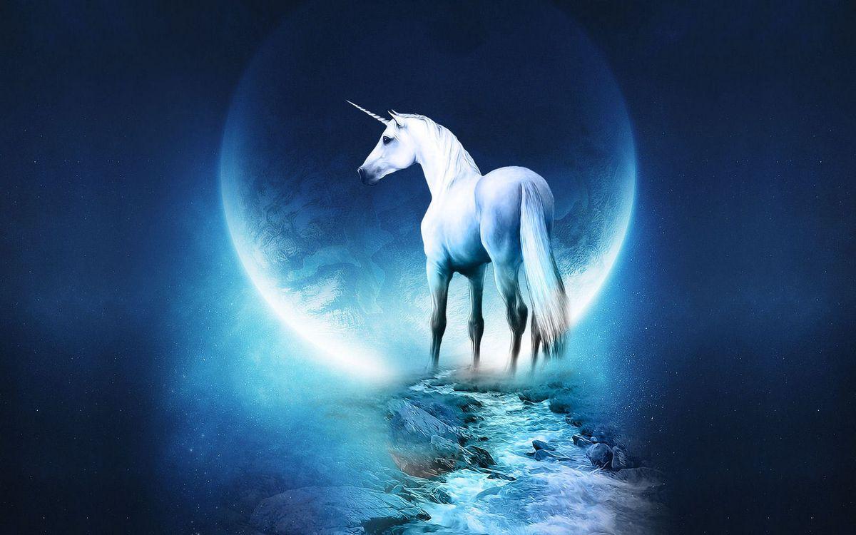 Фото бесплатно единорог, белый, луна, ручей, камни, обои, фантастика, фантастика