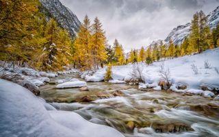 Бесплатные фото горы,снег,деревья,вода,камни,небо,природа