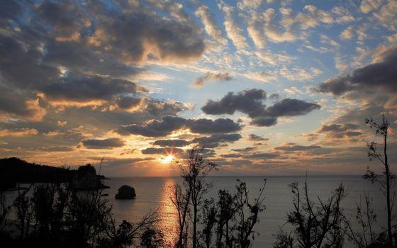 Бесплатные фото море,вода,небо,облака,солнце,кусты,природа
