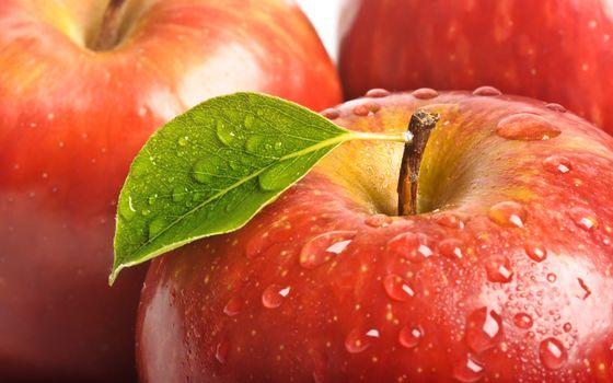 Photo free apple, water, drops