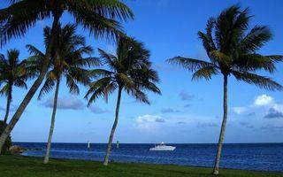 Заставки берег, трава, пальмы, море, яхта, знаки, небо, облака, пейзажи