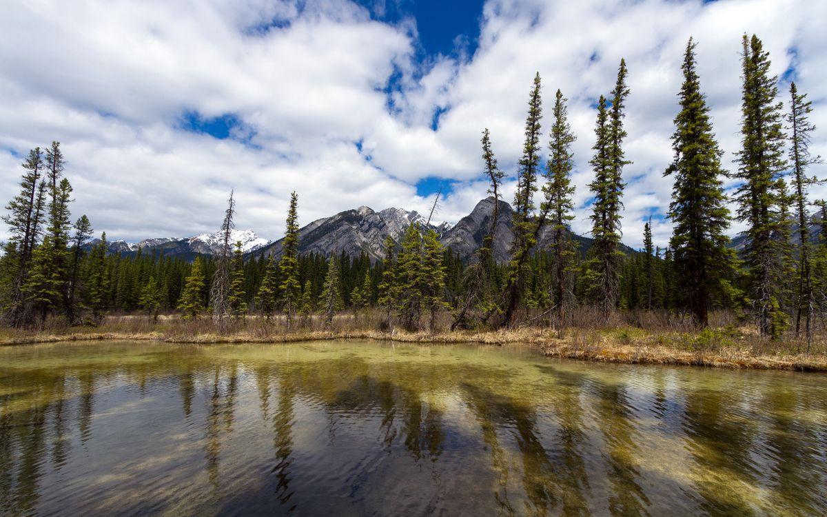 Фото бесплатно озеро в тайге, хвойный лес, сухая трава, облака, горы, природа, природа