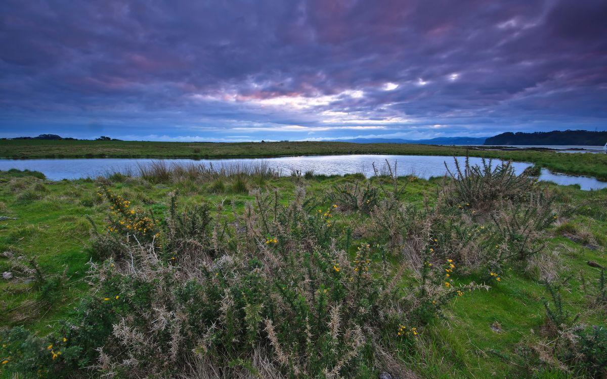 Фото бесплатно река, вода, волны, берег, трава, растения, зелень, небо, облака, тучи, лето, тепло, природа, пейзажи, пейзажи - скачать на рабочий стол