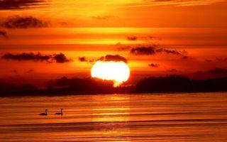 Фото бесплатно солнце, закат, красный