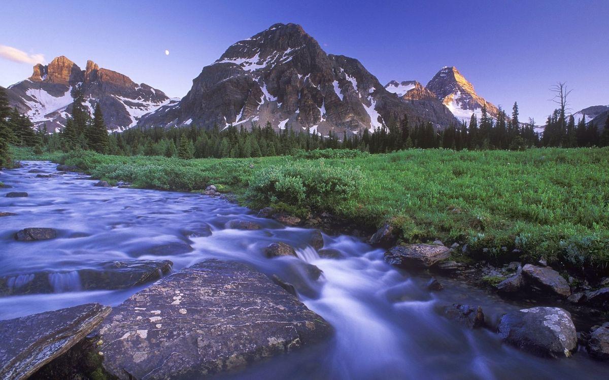 Фото бесплатно вода, река, горы, скалы, снег, лес, деревья, природа, природа - скачать на рабочий стол