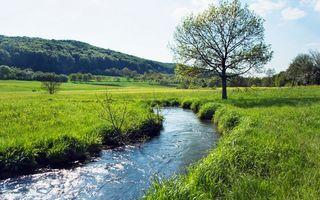 Бесплатные фото вода, река, трава, деревья, лес, небо, горы