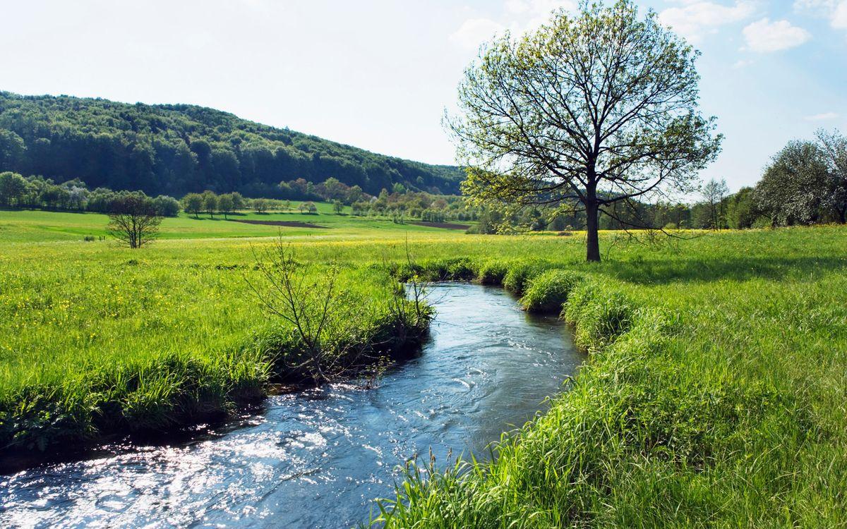 Фото бесплатно вода, река, трава - на рабочий стол