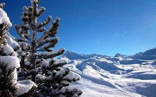 Бесплатные фото зима,горы,снег,елки,небо,природа