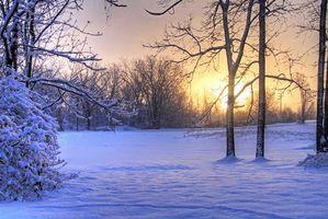 Заставки зима,закат,поле,снег,сугробы,деревья,пейзаж