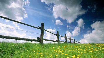 Заставки забор,ограда,на ферме,для скота,трава,небо,солнце