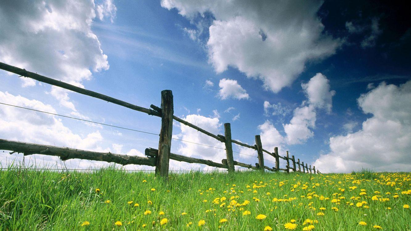 Фото бесплатно забор, ограда, на ферме, для скота, трава, небо, солнце, разное, разное