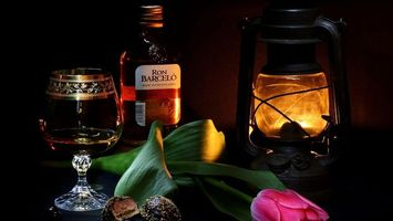 Бесплатные фото бутылка,бокал,лампа,свет,темно,цветок,листья