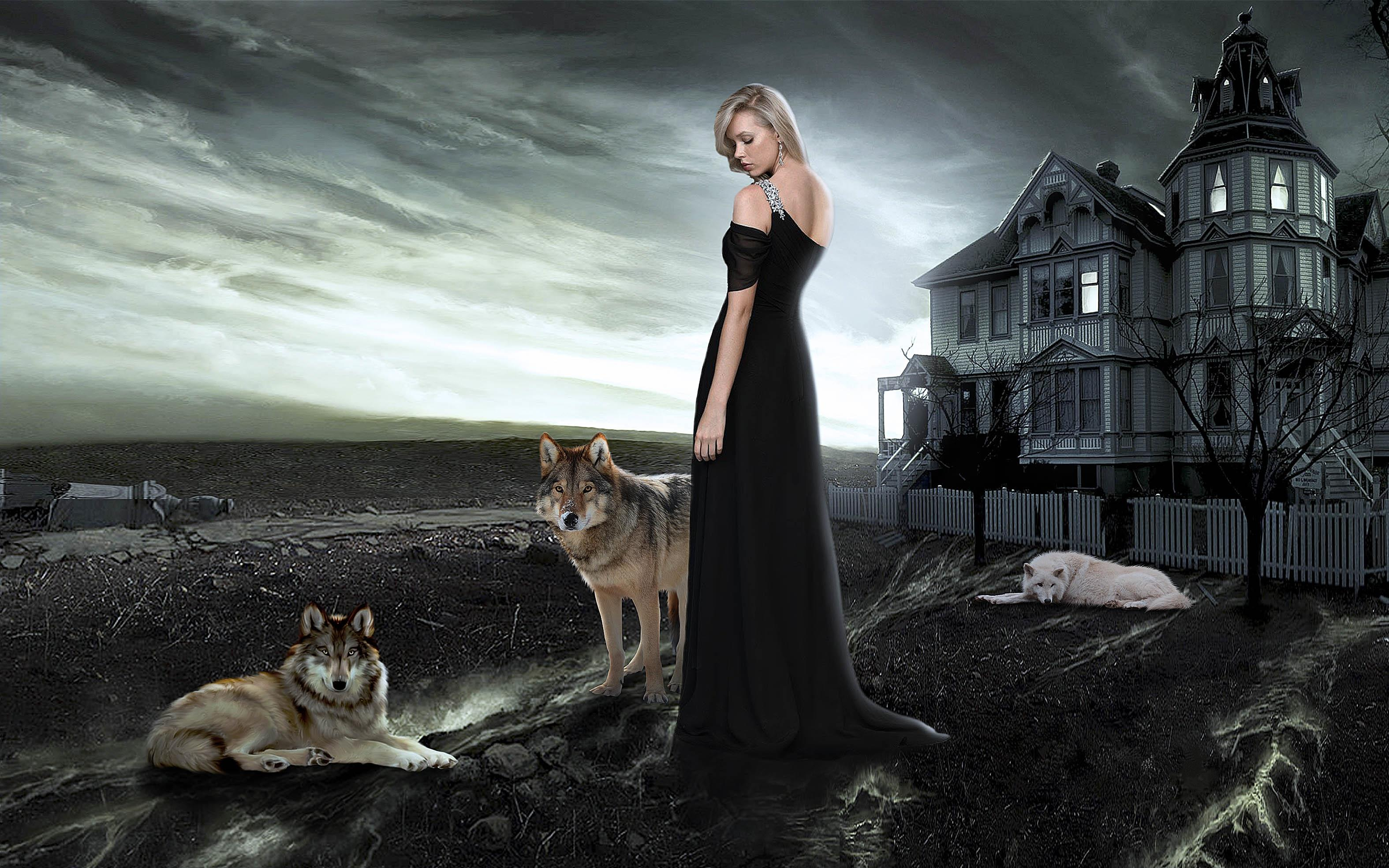 Обои дом, девушка, волки, art